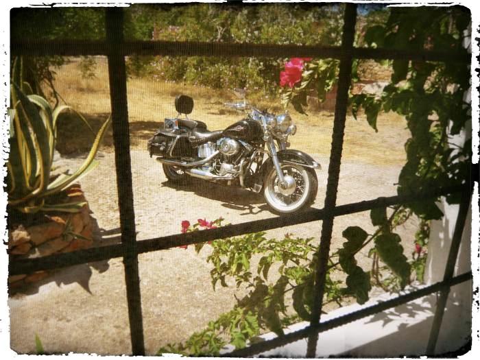 Blog 1 Ibiza Finca aus dem Fenster_Fotor_Fotor